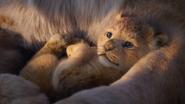 Lionking2019-animationscreencaps.com-305