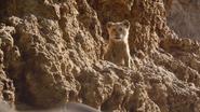 Lionking2019-animationscreencaps.com-4934