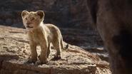 Lionking2019-animationscreencaps.com-4433