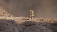 Lionking2019-animationscreencaps.com-5456