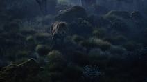 Lionking2019-animationscreencaps.com-9898
