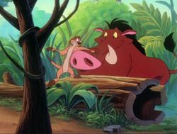 TZ Timon & Pumbaa18