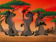 BTB hyenas6