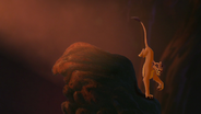 Lion-king2-disneyscreencaps.com-2787