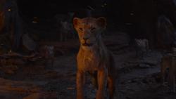 Lionking2019-animationscreencaps.com-11593
