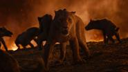 Lionking2019-animationscreencaps.com-11764