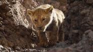 Lionking2019-animationscreencaps.com-5008
