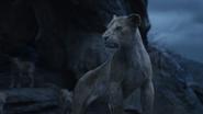 Lionking2019-animationscreencaps.com-11237