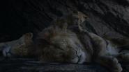 Lionking2019-animationscreencaps.com-1207