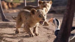 Lionking2019-animationscreencaps.com-2448