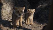 Lionking2019-animationscreencaps.com-3407