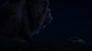 Lionking2019-animationscreencaps.com-3716