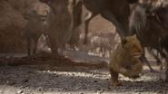 Lionking2019-animationscreencaps.com-4714