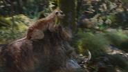 Lionking2019-animationscreencaps.com-6739