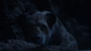 Lionking2019-animationscreencaps.com-7770