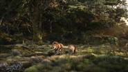 Lionking2019-animationscreencaps.com-9309