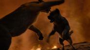 Lionking2019-animationscreencaps.com-11925
