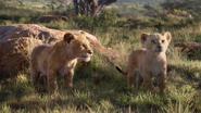 Lionking2019-animationscreencaps.com-2207