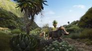 Lionking2019-animationscreencaps.com-6700