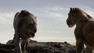 Lionking2019-animationscreencaps.com-7456