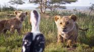 Lionking2019-animationscreencaps.com-2322