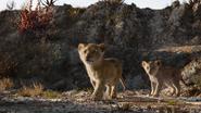 Lionking2019-animationscreencaps.com-2789