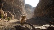 Lionking2019-animationscreencaps.com-5155