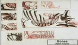 Hyenacanyon
