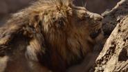 Lionking2019-animationscreencaps.com-4958