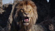 Lionking2019-animationscreencaps.com-3368