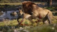 Lionking2019-animationscreencaps.com-9489