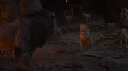 Lionking2019-animationscreencaps.com-11584