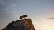 Lionking2019-animationscreencaps.com-1304
