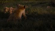 Lionking2019-animationscreencaps.com-3560