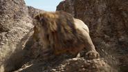 Lionking2019-animationscreencaps.com-4806