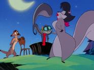SC Timon & squirrels