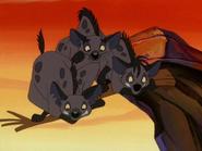 CTAY hyenas32