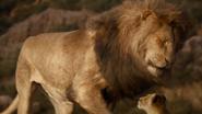 Lionking2019-animationscreencaps.com-1443