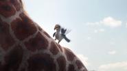 Lionking2019-animationscreencaps.com-2599