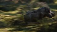 Lionking2019-animationscreencaps.com-8999