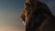 Lionking2019-animationscreencaps.com-3533