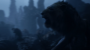 Lionking2019-animationscreencaps.com-4218