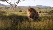 Lionking2019-animationscreencaps.com-1595