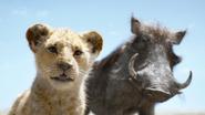 Lionking2019-animationscreencaps.com-6449