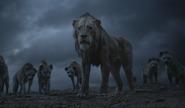 Scar & Hyena's LA EW