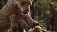 Lionking2019-animationscreencaps.com-9125