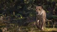 Lionking2019-animationscreencaps.com-9727