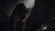 Lionking2019-animationscreencaps.com-3147