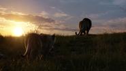 Lionking2019-animationscreencaps.com-3478