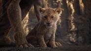 Lionking2019-animationscreencaps.com-5415